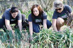 NSU students helping with yard work during The Big Event